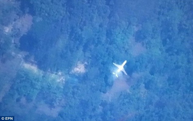 The satellite image from Tomnod, the online map site used by millions in the search for the missing Malaysia Airlines flight MH370, shows a passenger plane over a jungle