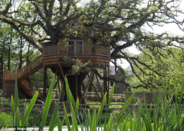 Giant Devon Treehouse Opens As A Holiday Home With Turrets