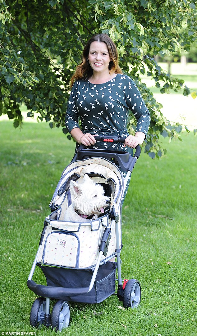 Baby Plus Buggy The New Treat For A Pampered Pooch A Doggie Pram After