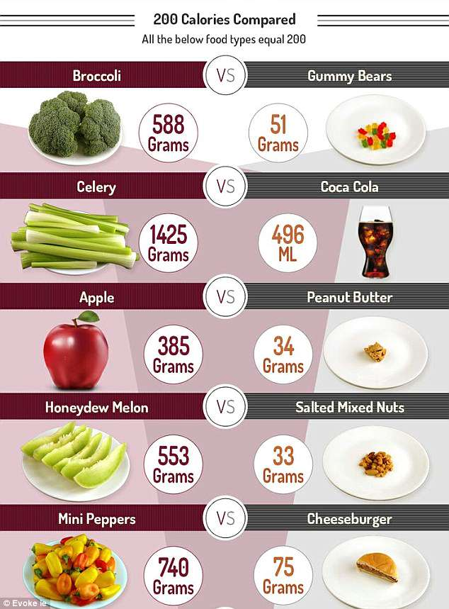 Daily calorie intake of countries across the world revealed Daily