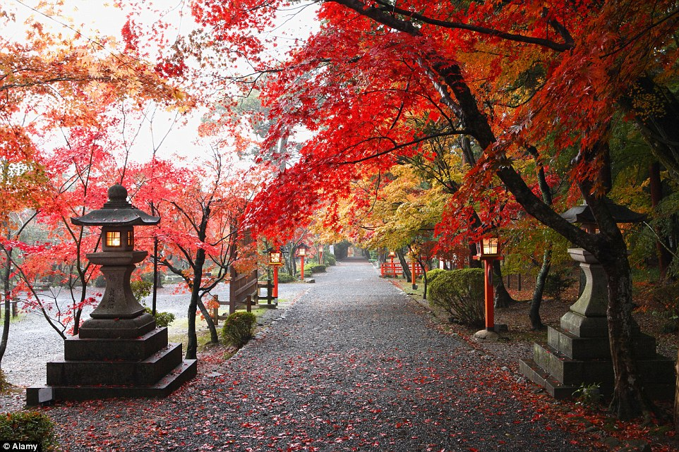 Upstate New York Fall Hd Wallpaper Stunning Photos Capture The Breathtaking Beauty Of Autumn