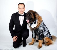 Dogs display designer Anthony Rubio's couture outfits for ...