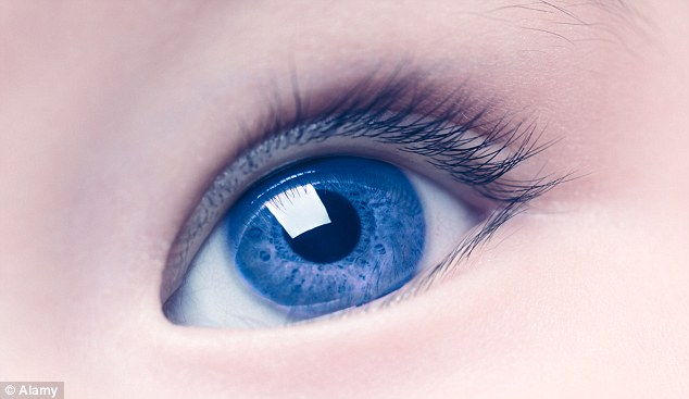 Could our ancestors see blue? Ancient people didn\u0027t perceive the