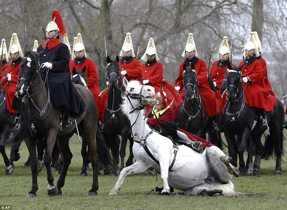 Wallpaper Border Falling Off Trumpeter Thrown During Household Cavalry S Annual