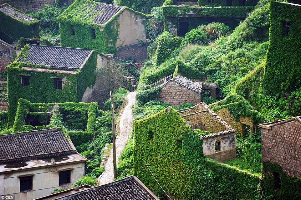 Fall Wallpaper Japan How A Abandoned Fishing Village In China Became A Green