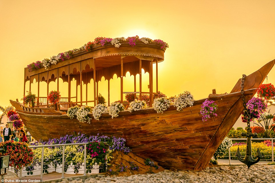 Car In Desert Hd Wallpaper Rainbow Coloured Oasis With 45m Flowers Is In The Middle