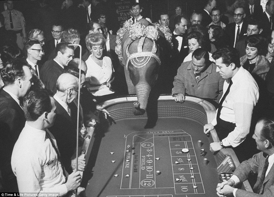 Rare Photos Reveal How Las Vegas Has Transformed Over The