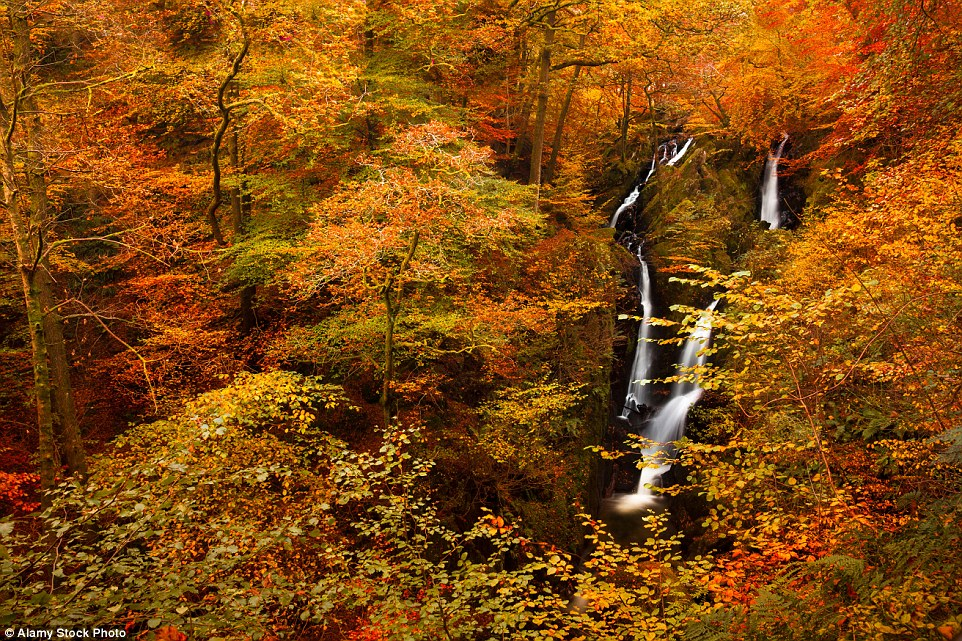 New Hampshire Fall Foliage Wallpaper The Most Stunning Uk Places To Witness Autumn Colours