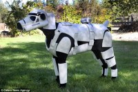 Sci-fi man creates costumes for her dog including a Star ...