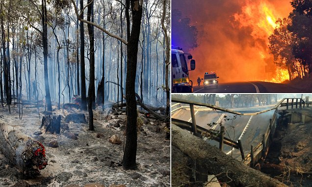 Air Travel While Pregnant Western Australian Bushfire Is Destroying 95 Houses And