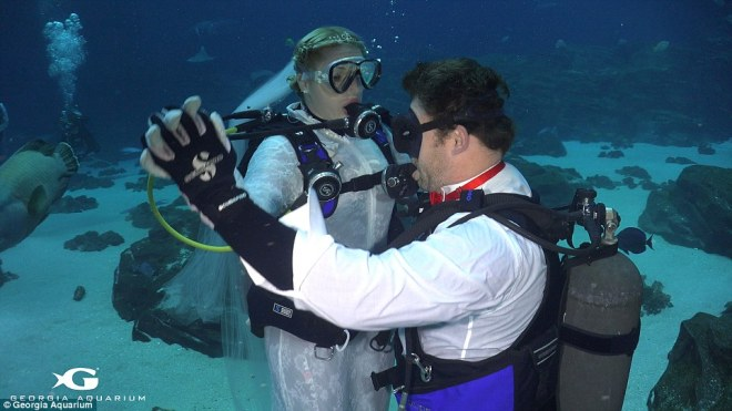 No regrets:'We never thought we would get married in an aquarium, but it mixes our love for diving and for one another, it's something we love doing together,' Mrs Reynolds said