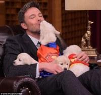 Ben Affleck smooches superhero puppy on the Tonight Show ...