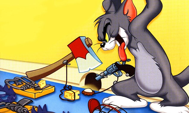 Wallpaper Falling Off Wall Egypt S Salah Abdel Sadek Blames Tom And Jerry For Isis