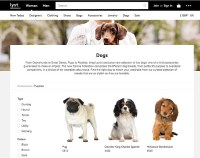 Lyst admits 'canine collection' was a hoax following ...
