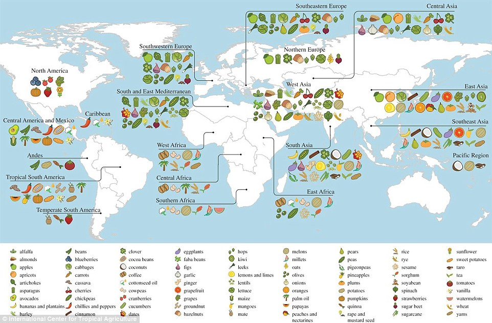 Interactive map shows where the world\u0027s food comes from Daily Mail