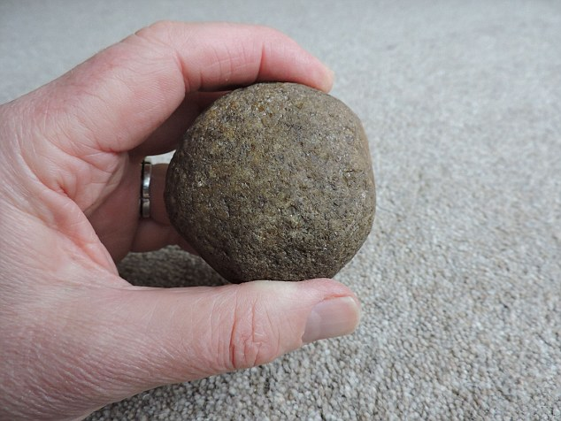 Throwing Rocks Were Effective Weapons For Early Humans