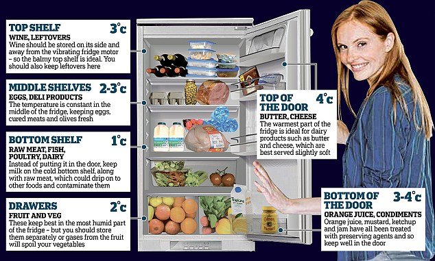 Cold truth about your fridge reveals you\u0027re not keeping in cold