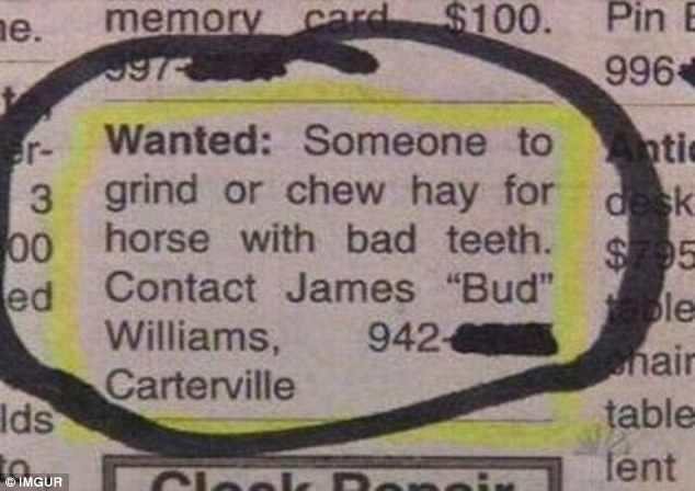 Whether this role was ever actually filled will remain a mystery, but the job requirement was bizarre to say the least