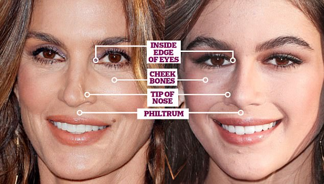Face map shows the features you\u0027re likely to inherit Daily Mail Online
