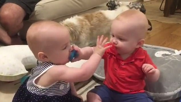 Twin babies steal each other\u0027s pacifiers Daily Mail Online