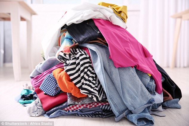 Bed Bugs Are Attracted To Dirty Laundry Shows Study