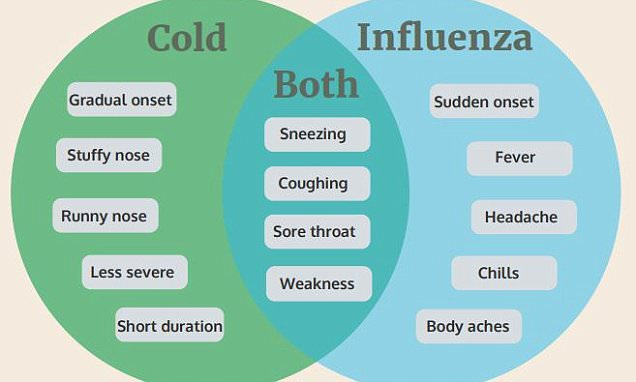 How to identify if you have the flu or just a common cold Daily