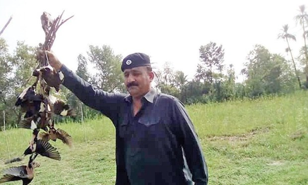 A wildlife official shows the seized birds to media persons in Lakki Marwat. — Dawn