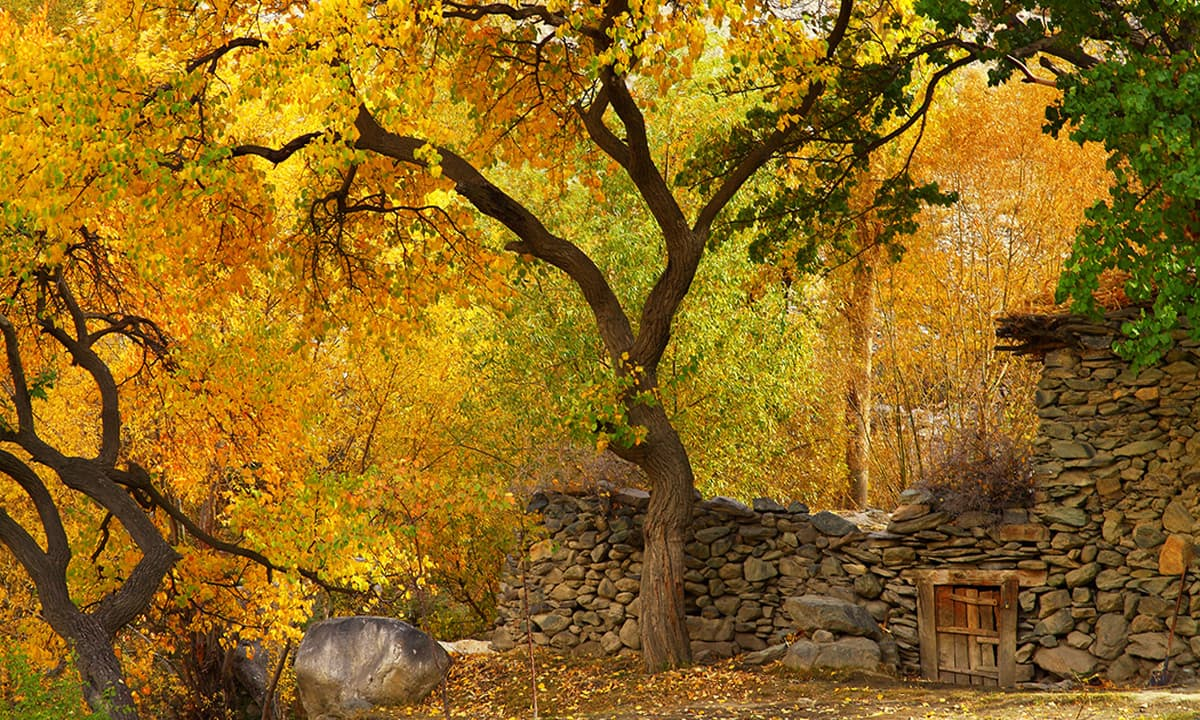 Fall Season Wallpaper Free Hunza Valley A Whole New Spectrum Of Colours Pakistan