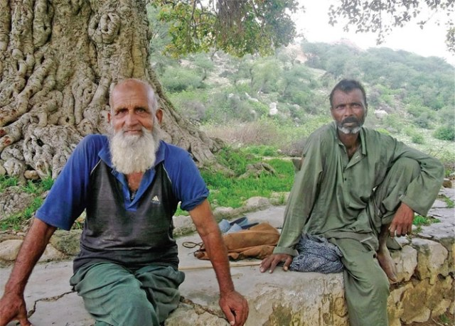 Two shepherds rest under a banyan tree, by the pond near Saloi village.