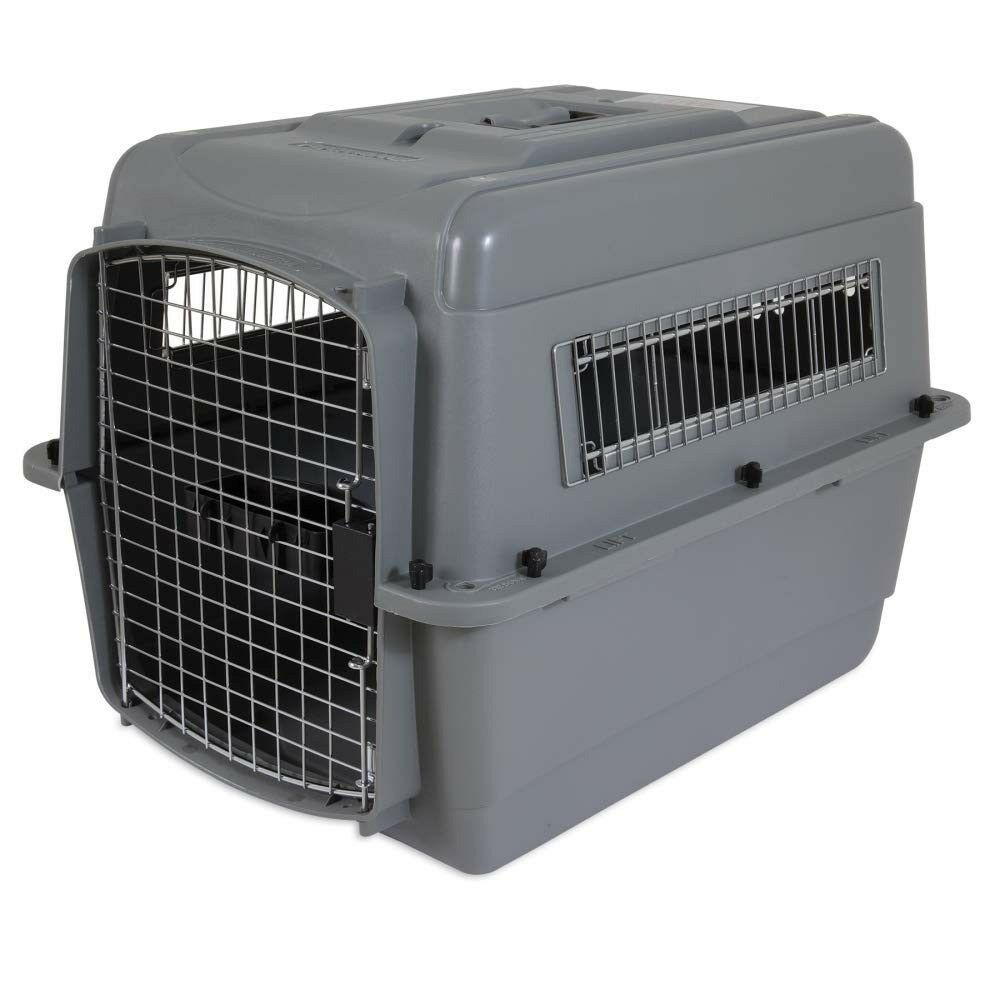 Cat Cage Gumtree Petmate Sky Kennel Pet Carrier Dog Crate Cat Kennel Approved For Air Travel In Hyde Park London Gumtree