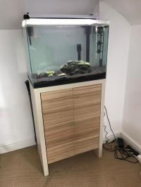 Fluval Fresh F60 (F 60) Premium Tropical Fish Aquarium ...