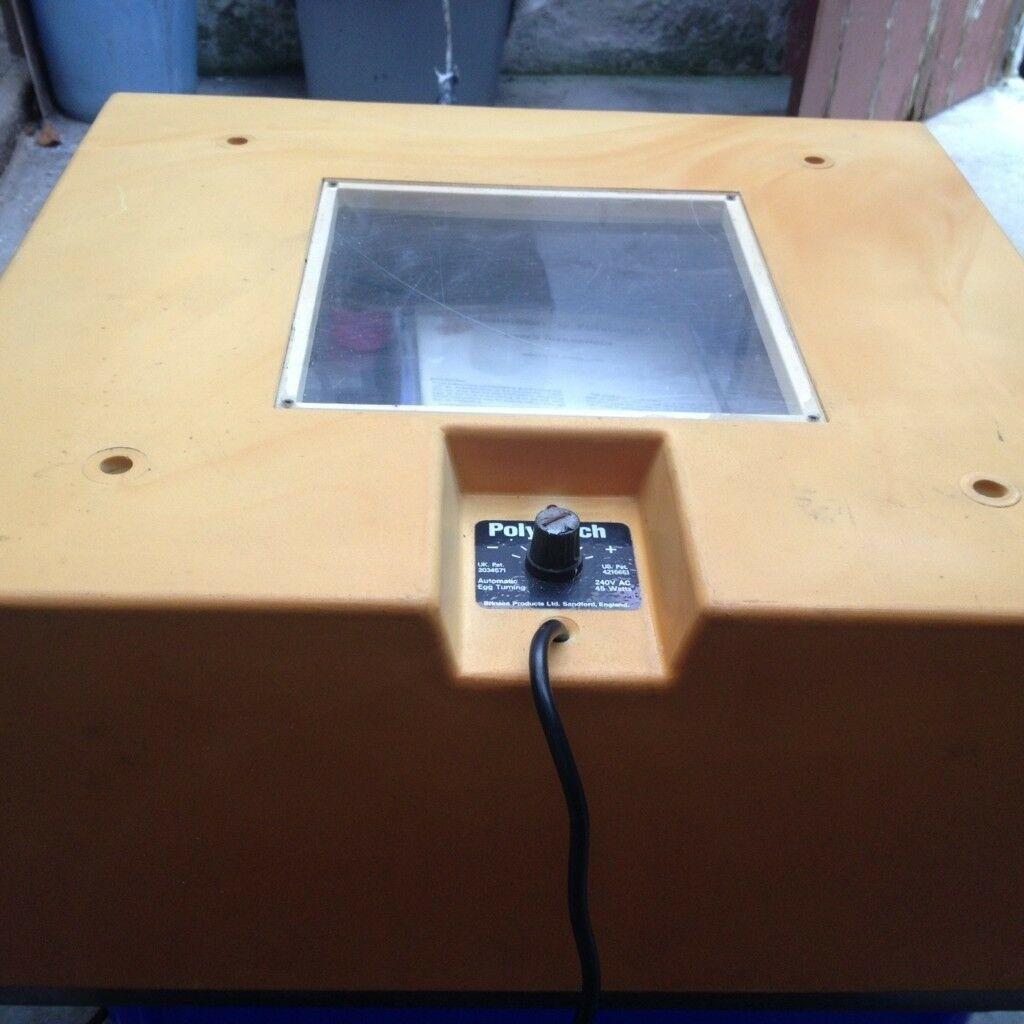 Cat Cage Gumtree Brinsea Polyhatch Incubator In St Austell Cornwall