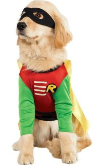39 Adorable Cat And Dog Halloween Costumes | eBay