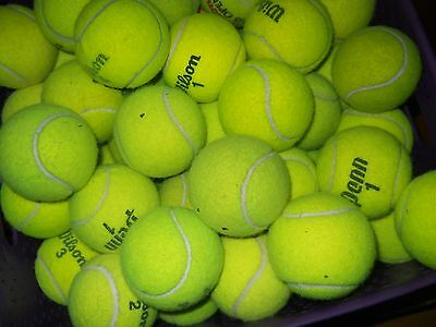 Balls - 100 Used Tennis Balls - Trainers4Me