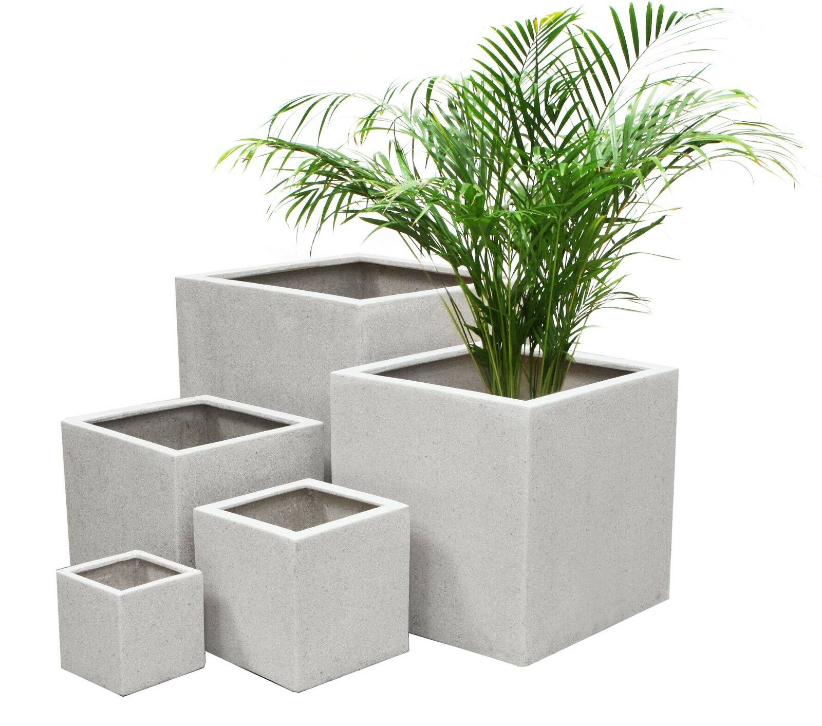 Indoor Pot Plants Need Advice With Houseplant Containers And Pots