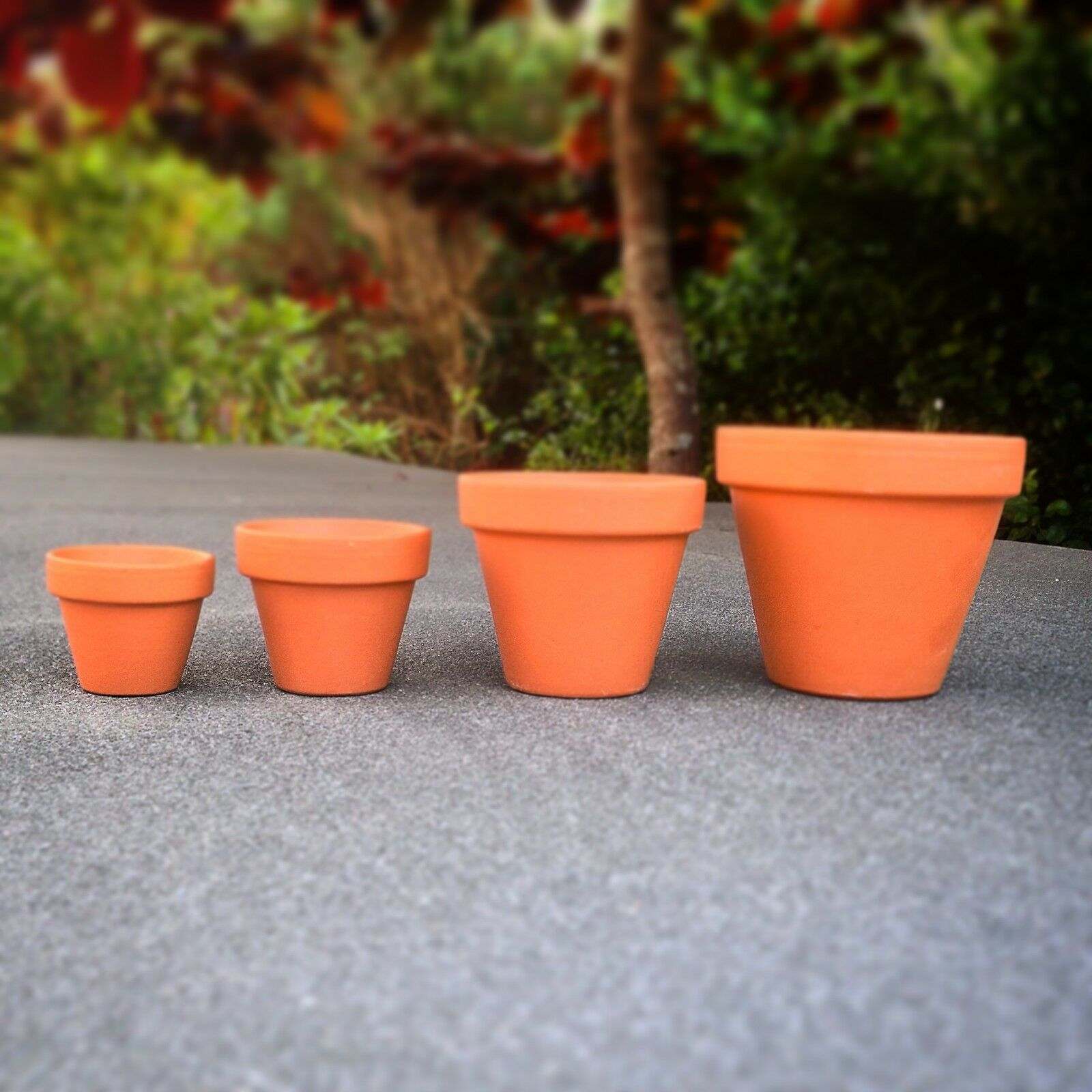 Mini Plant Pots Bulk 10 Mini Terracotta Plant Pots 4 3cm Diameter Great Value