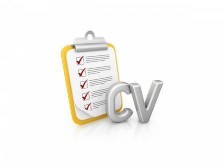 Expert Cv Writing Services From Cv Master Careers Cv Writing Expert Professional Cv Writing Free Cv Audit
