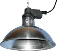 Dog Heat Lamp