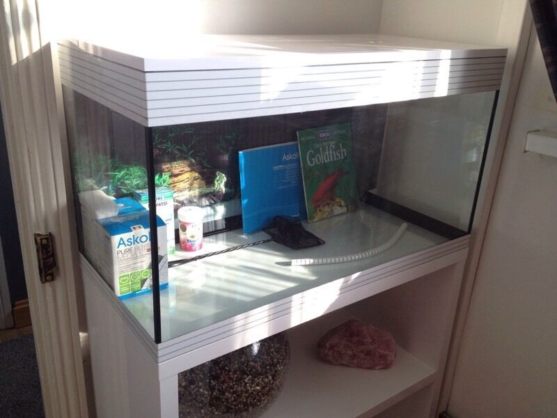 Cat Cage Gumtree Askoll Pure Xl 94 Litre Fish Tank With Gloss White Cabinet