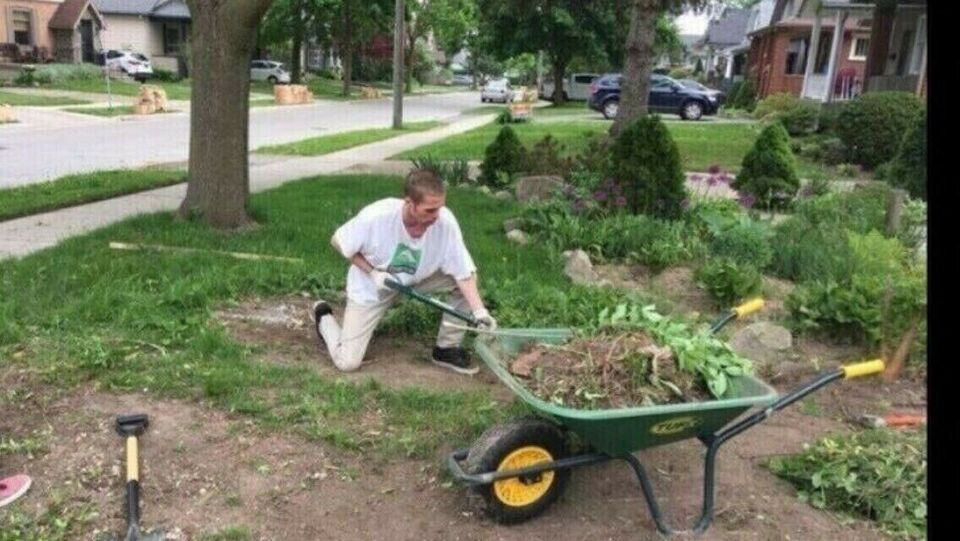 Do you need yard work Done ? Lawn, Tree Maintenance  Eavestrough