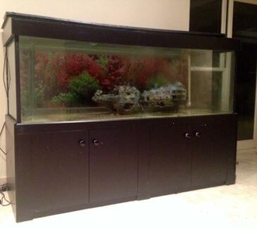 Fish Tank with stand Sydney Region Preview