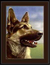 English Print German Shepherd Dog Dogs Puppy Art Vintage ...