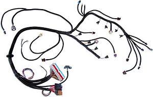 standalone wiring harness ls1 4l60e