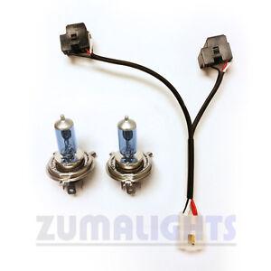 yamaha zuma dual headlight wiring harness kit