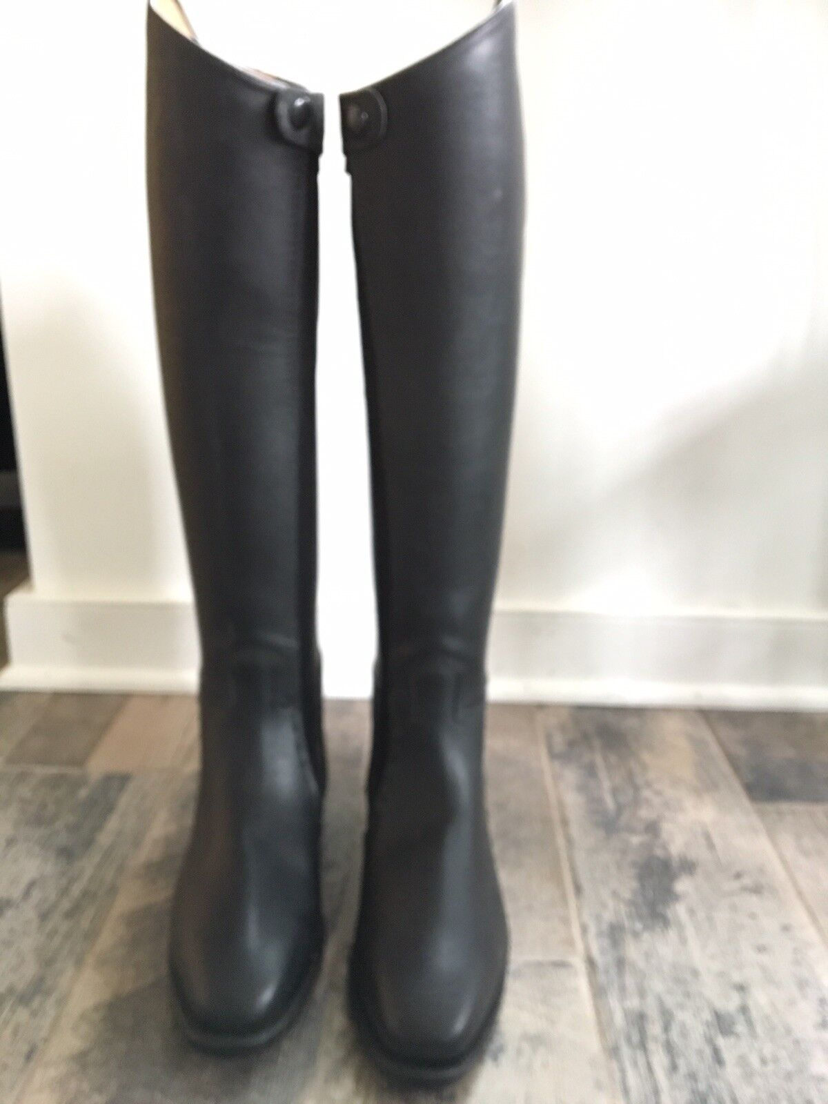 Regal Stedge New Womans Dressage Boots W Ykk Cavallo Size Us 10 Xhe Weltmeister