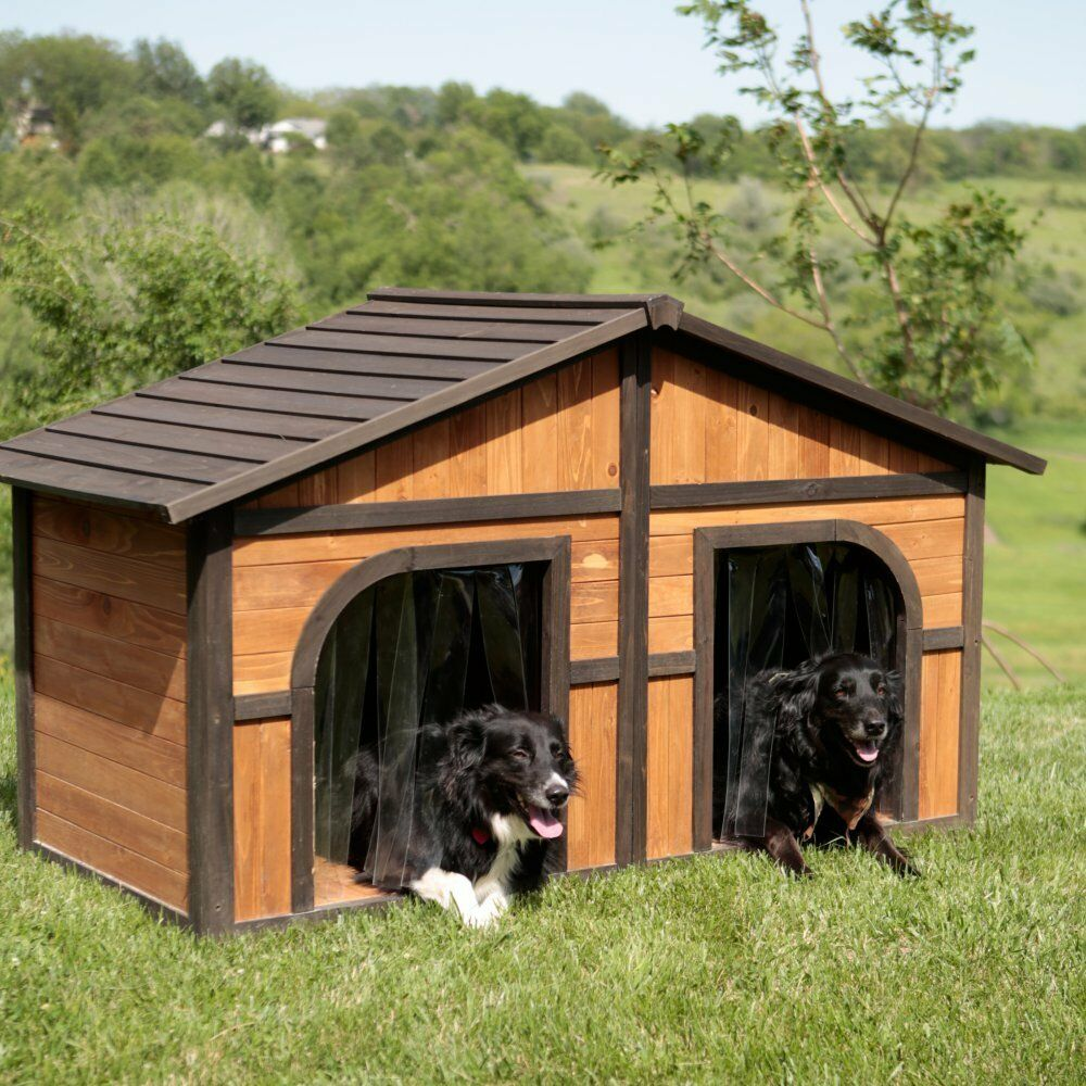 Double Dog Bed Double Door Dog House Outdoor Extra Large Dogs Wood Pet Shelter Xl Duplex 710165906801 Ebay