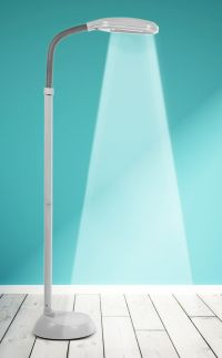 Kenley Natural Daylight Floor Standing Lamp High Vision ...