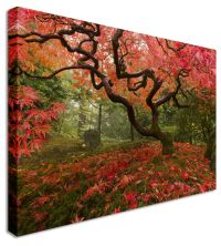 Large Abstract Rustic Landscape Canvas Wall Art Pictures ...
