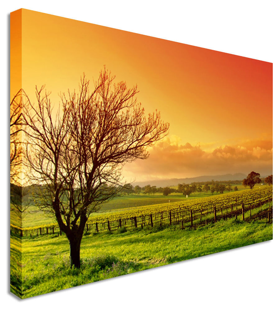 Leinwandbild Baum Large Orange Green Field Lonely Tree Canvas Pictures Wall