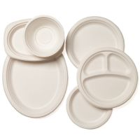 Biodegradable Bagasse Sugarcane White Paper Plates Bowls ...